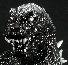 KaijuZoo West Kenji Monochrome GMK Godzilla